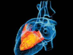 Public Reporting of Cardiovascular Data: Benefits, Pitfalls, and Vision for the Future