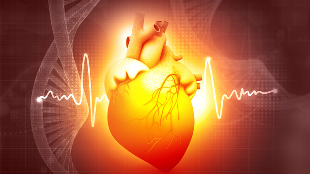 Precision Medicine in Interventional Cardiology