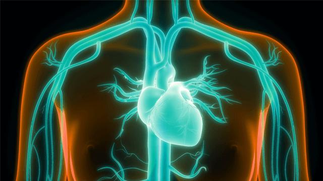 Atrial Fibrillation in Congenital Heart Disease