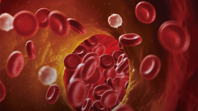 NOACs and Dual Antiplatelet Therapy