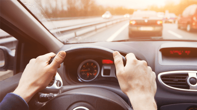 A Review of Driving Restrictions in Patients at Risk of Syncope and Cardiac Arrhythmias Associated with Sudden Incapacity