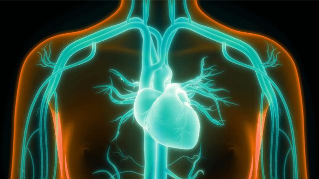 Atrial Fibrillation in Heart Failure Patients