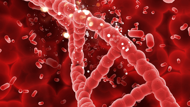 Platelet Function Testing and Genotyping in Complex PCI
