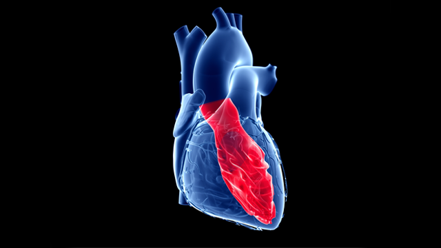 Left Ventricular Remodelling: A Problem in Search of Solutions
