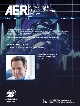 AER - Volume 6 Issue 1 Spring 2017