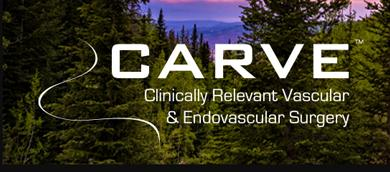 Clinically Relevant Vascular and Endovascular Surgery 2022
