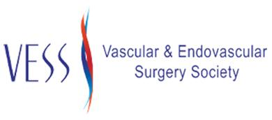 Vascular And Endovascular Surgery Society Annual Winter Meeting 2021