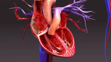 Right Ventricular Failure: Pathophysiology, Diagnosis and Treatment