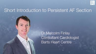 Short Introduction to Persistent Atrial Fibrillation Section