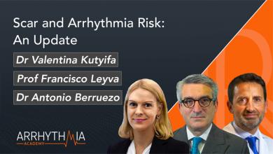 Scar and Arrhythmia Risk: an Update