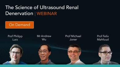 The Science of Ultrasound Renal Denervation