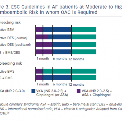 ESC Guidelines in AF patients at Moderate to High Thromboembolic Risk in whom OAC is Required