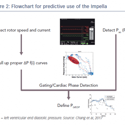 Flowchart for predictive use of the Impella