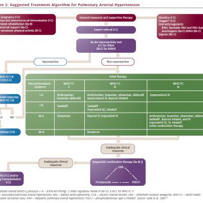 Suggested Treatment Algorithm for Pulmonary Arterial Hypertension