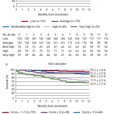 One-year Survival in the Validation Cohort Stratified According to Estimated Probability of Surviving One Year
