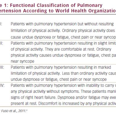 Functional Classification of Pulmonary Hypertension According to World Health Organization