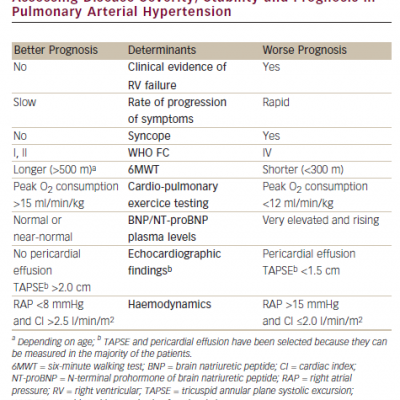 Parameters with Established Importance for Assessing Disease Severity, Stability and Prognosis in Pulmonary Arterial Hypertension