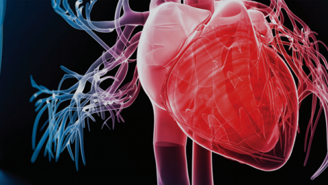 Impact of Iron Deficiency in Heart Failure