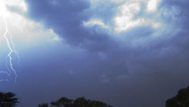 Cardiac Effects of Lightning Strikes