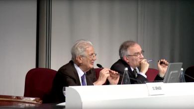 ESH 2013: Minisymposium Part 7