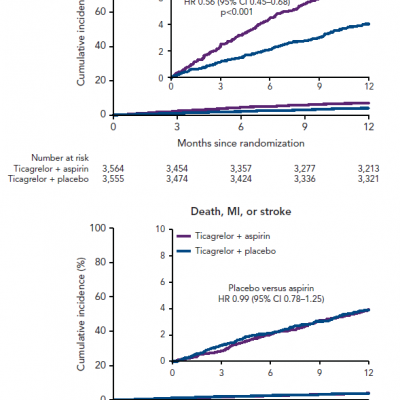 Kaplan–Meier Curves of Survival Free of Ventricular Tachycardia or VF in the VTACH Study