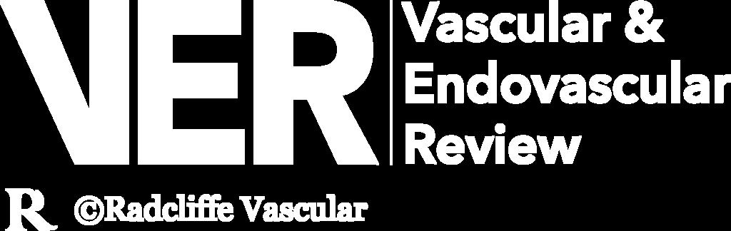 VER Logo